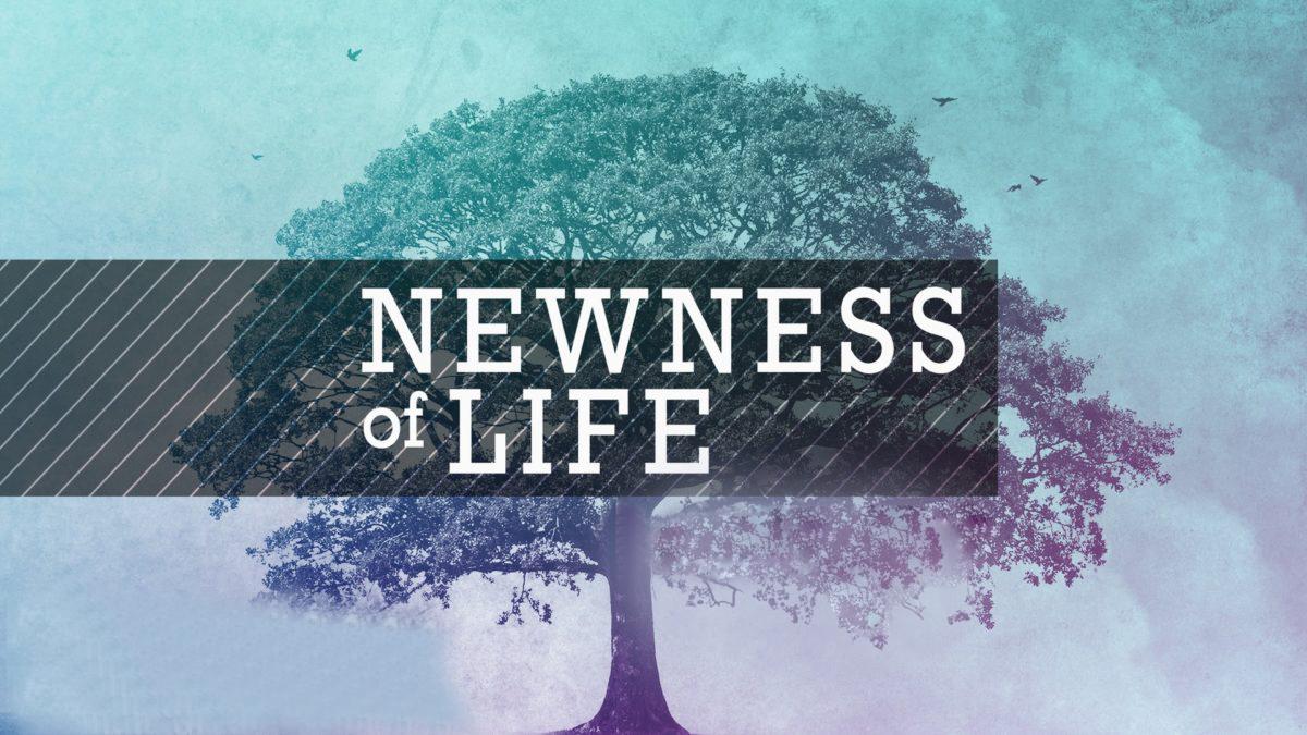 Newness of Life <br/>Cheri
