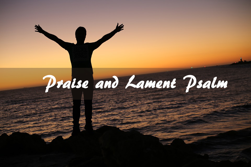 Praise and Lament Psalm <br/> Wilsy-Shanthi-Vinod