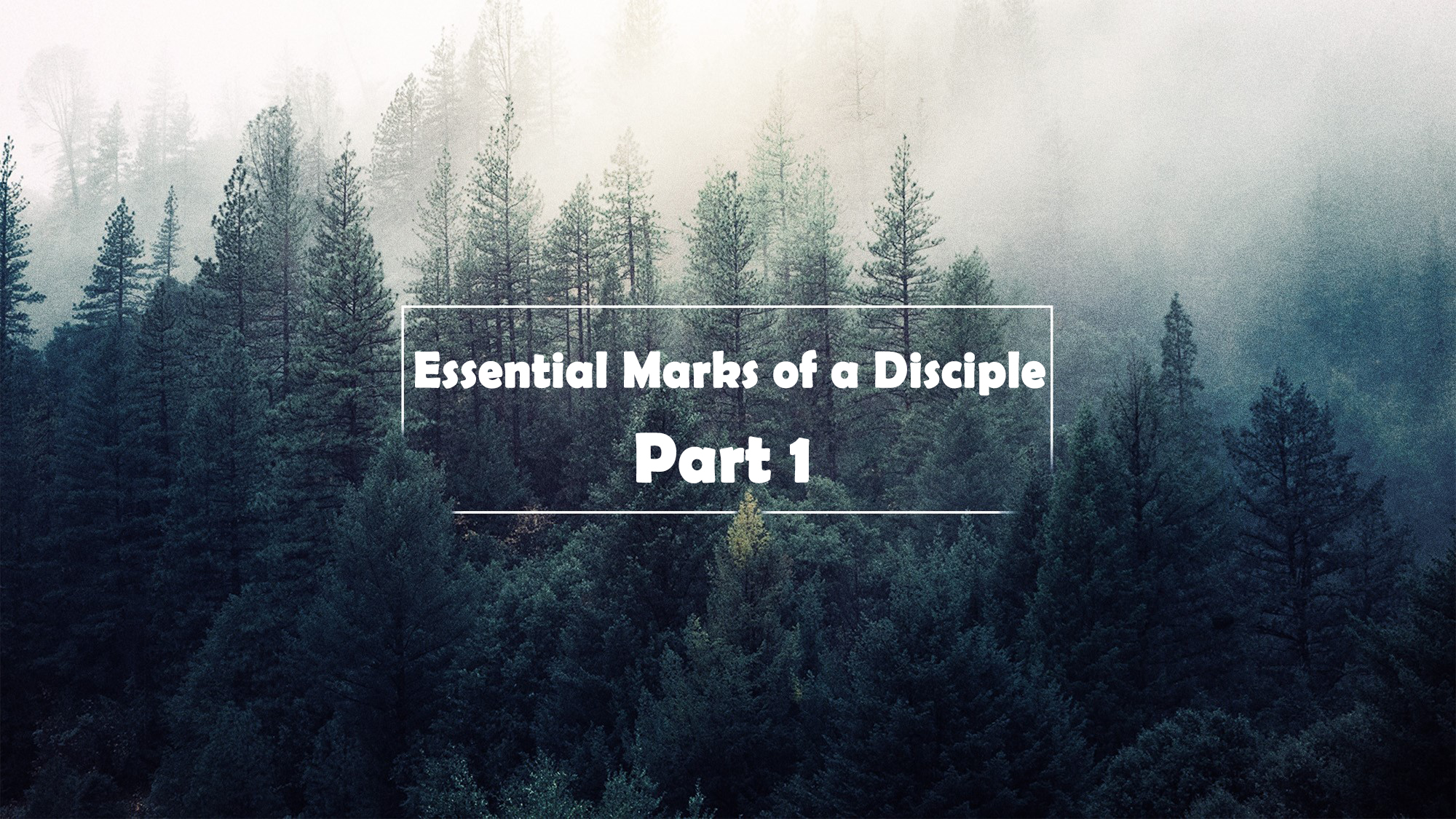 Essential Marks of a Disciple part 1<br/> Vinod Samuel
