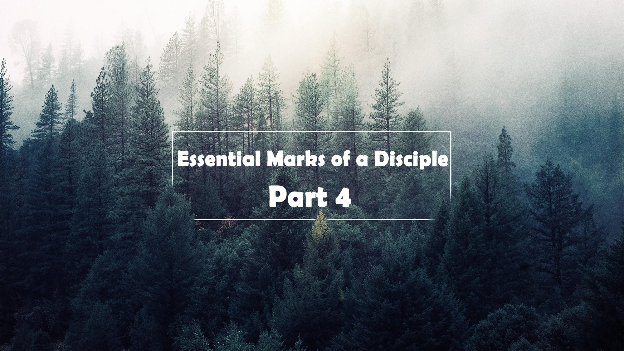 Essential Marks of a Disciple part 4 <br/> Vinod Samuel
