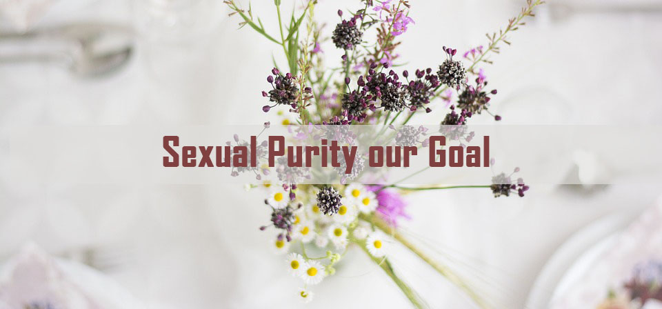 sexual purity our goal<br/> Vinod Samuel