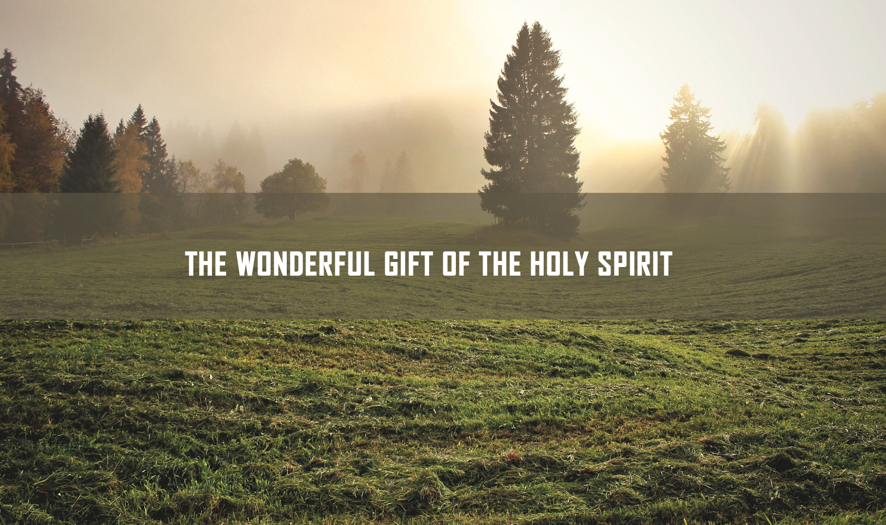 THE WONDERFUL GIFT OF THE HOLY SPIRIT <br/> SUNIL ABRAHAM
