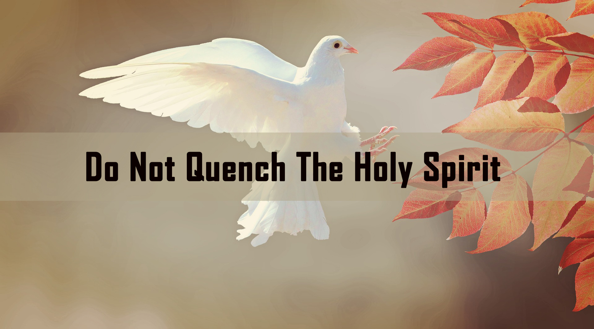 Do not Quench the Holy Spirit <br/> Nicky Pereira