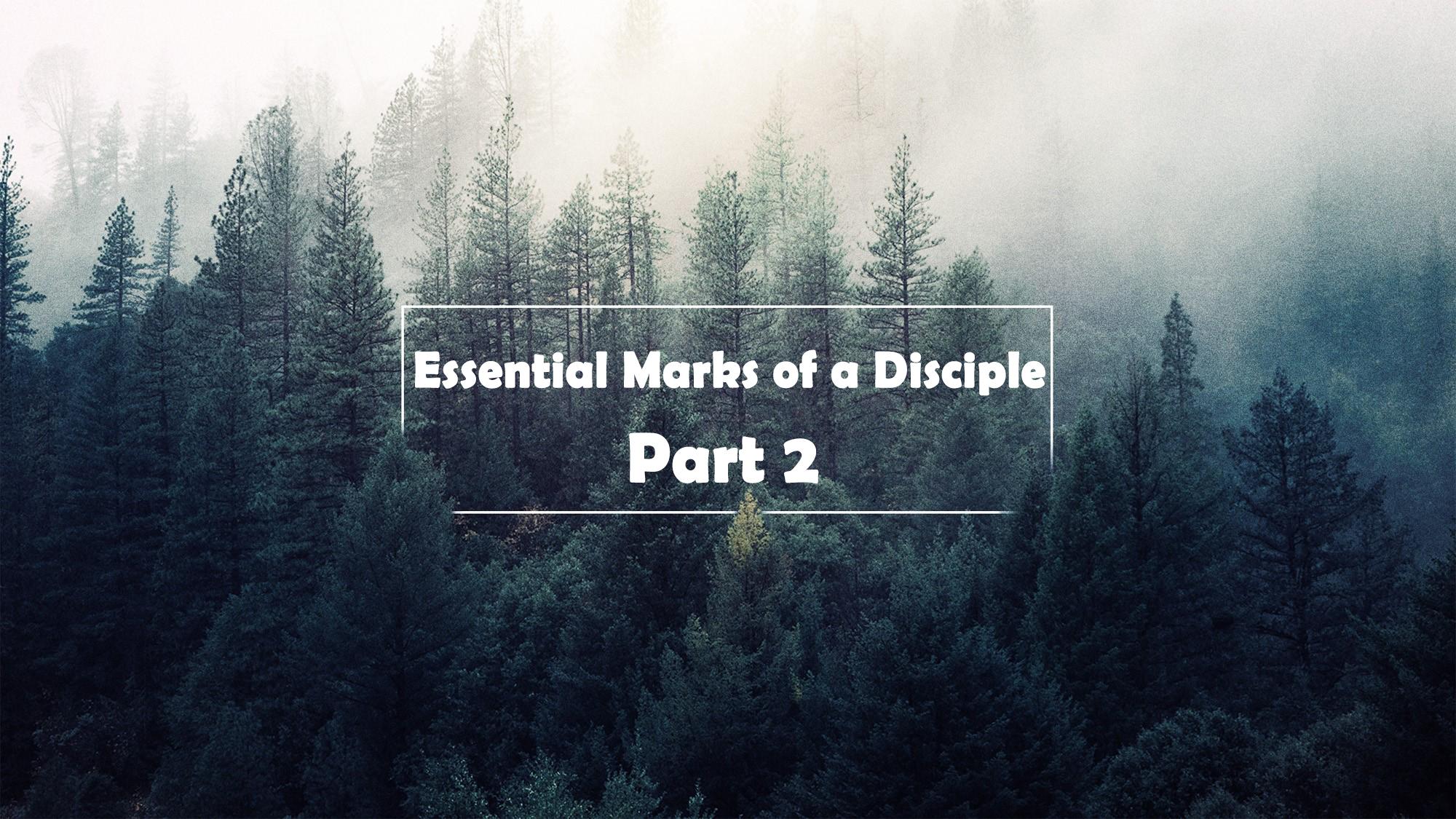 Essential Marks of a Disciple part 2</br> Vinod Samuel