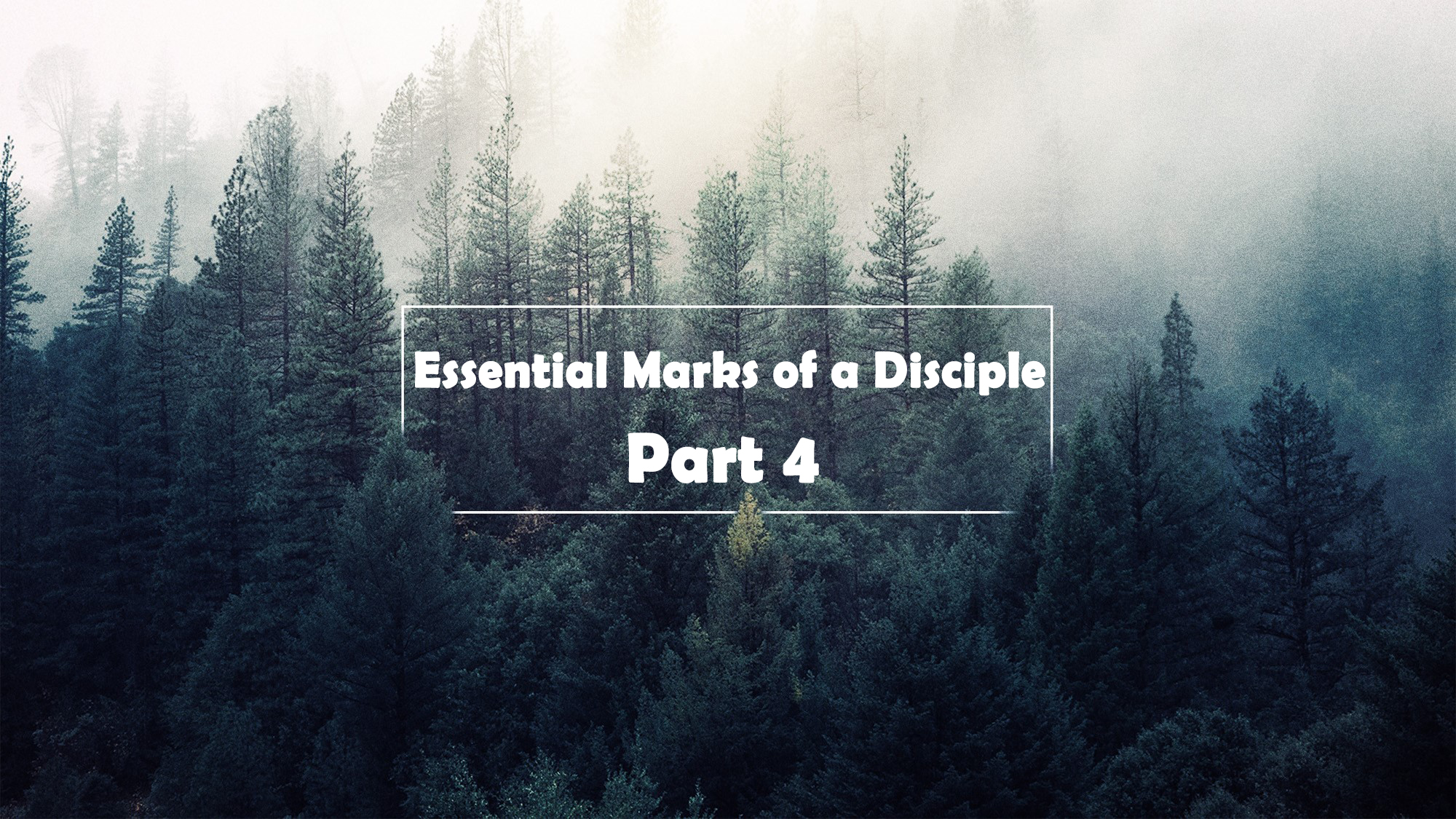 Essential Marks of a Disciple part 4 <br/> Vinod Samuel