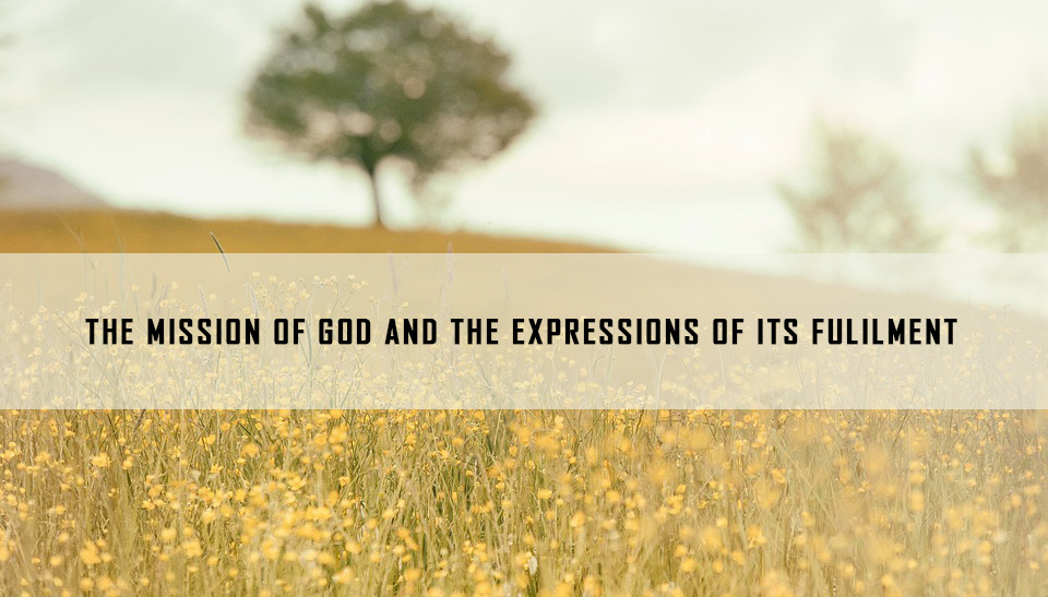 The Mission of God and The Expressions of its fulfilment <br/> Binzy Joseph