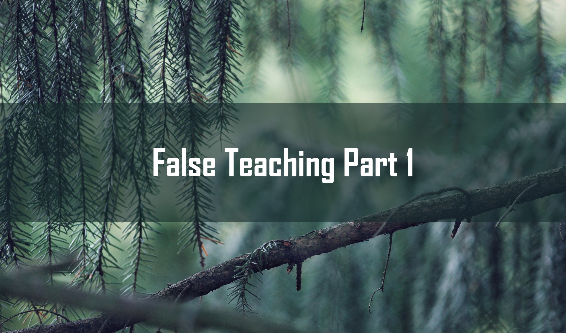 False Teaching part 1<br/> Vinod Samuel